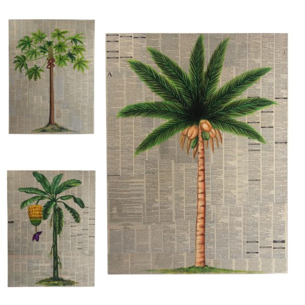 Expressionsmetis Home Decor Wall Art Decoration Tropical Tree Paintings Botanical