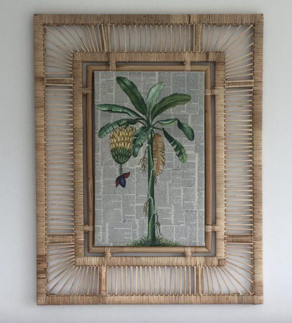 Expressionsmetis Home Decor Wall Art Natural Rattan Frame Vintage Botanical Banana Tree Original Painting Tropical Living