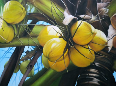 Expressionsmetis Home Decor Wall Art Yellow Coconut Original Painting On Canvas